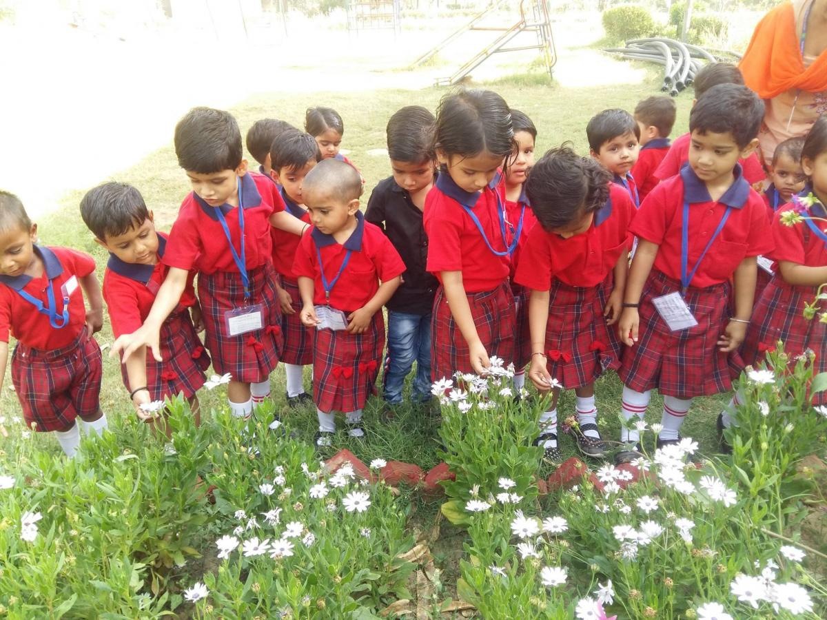 Earth Day  Our school kids Exploring, discovering, and appreciating our natural world.